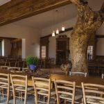 Tra i glicini e il sambuco riunioni conferenze feste vacanza scout classe tretto schio vicenza veneto meeting riunioni feste